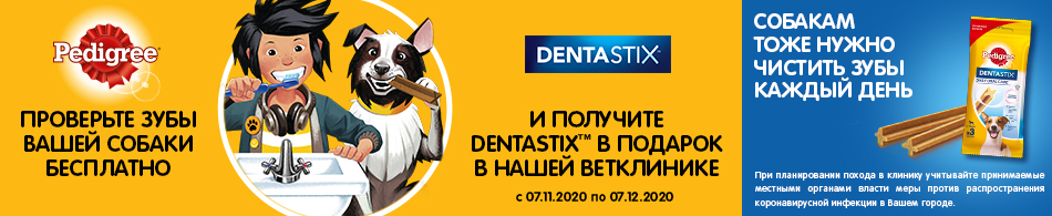 950x195-dentastix